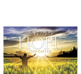 Easter Hope Field Postcard