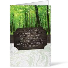 Fresh Air Woods Bulletin