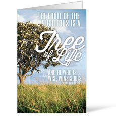 Reflections Life Bulletin