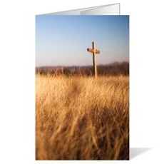 Cross and Wheat Field Bulletin
