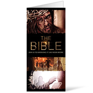 The Bible 30-Day Experience Bulletins