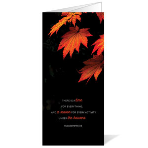 Illuminated Fall Bulletins