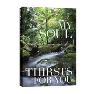 My Soul Thirsts 24in x 36in Canvas Prints