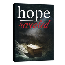 Hope Revealed Manger Wall Art