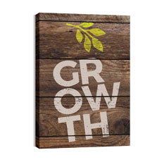 Shiplap Growth Natural