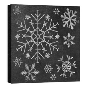 Mod Chalk Snowflakes 24 x 24 Canvas Prints