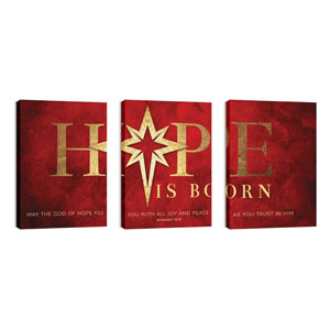 Hope Is Born Star Triptych 24in x 36in Canvas Prints