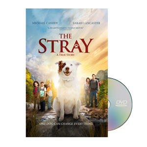 The Stray DVD License
