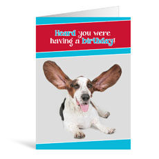 Ears Birthday Greeting Card