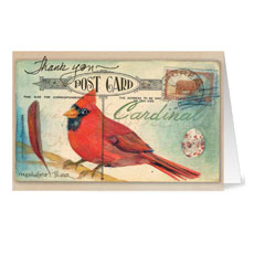 Cardinal Thank You Greeting Card