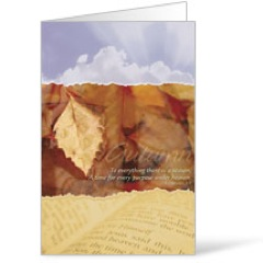 Seasons Autumn Bulletins