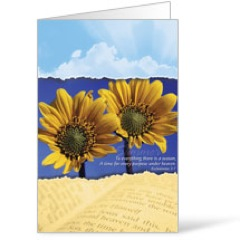 Seasons Summer Bulletins 8.5 x 11
