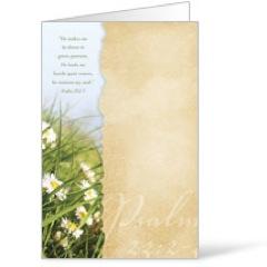 Torn Paper Spring Bulletin