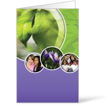 Circles Spring Bulletin