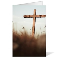 Cross and Salt Grass Bulletin