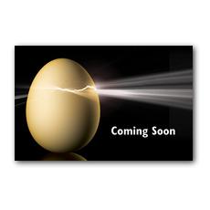 Cracked Egg Postcard