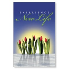 New Life Postcard