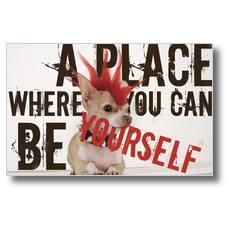 Punk Rock Dog Postcard