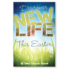 Discover New Life Postcard