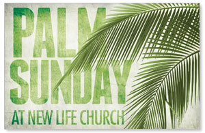 Palm Fronds Church Postcards