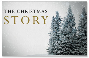 Christmas Story Trees Postcards