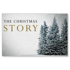 Christmas Story Trees Postcard
