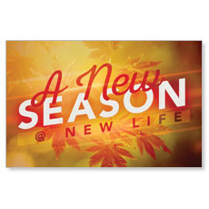 New Season Leaves Postcard