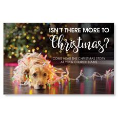 Dog More to Christmas Postcard