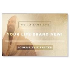 Easter Life Brand New Postcard