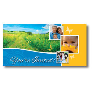 Summer Path XLarge Postcards