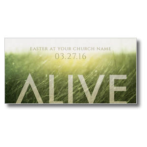 Alive Easter XLarge Postcards