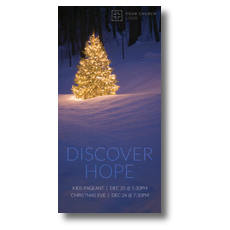 Discover Hope Bright Tree XLarge Postcard