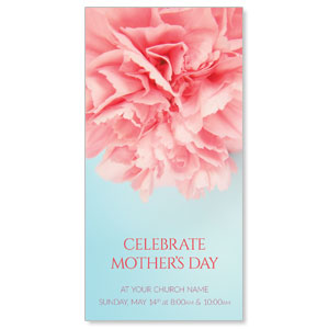 Carnation Mothers Day XLarge Postcards