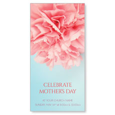Carnation Mothers Day XLarge Postcard