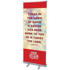 One Amazing Season Luke 2:11 Banner