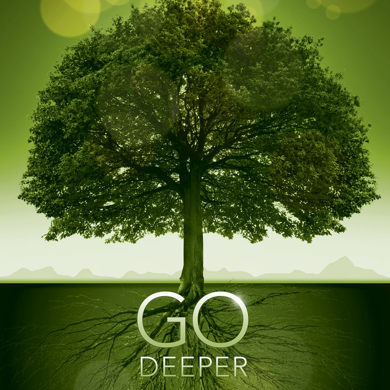 Banners, Ministry, Go Deeper Roots, 3' x 3'