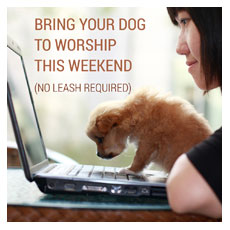 Bring Your Dog To Worship