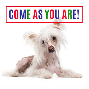 Come As You Are Dog Social Media Ad Packages