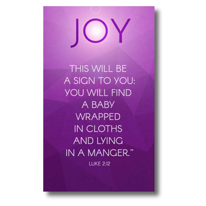 Advent Luke 2 Joy 3 x 5 Vinyl Banner