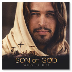 Son of God Who is He? Window Banner