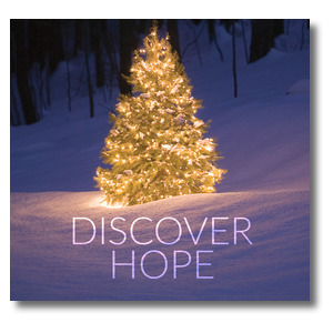 Discover Hope Bright Tree Window Banners
