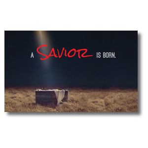 Savior Born Banners