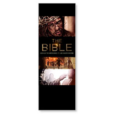 The Bible 30-Day Experience Banner